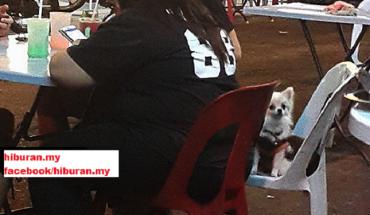 Pegang Anjing,bawa makanan pada orang muslim